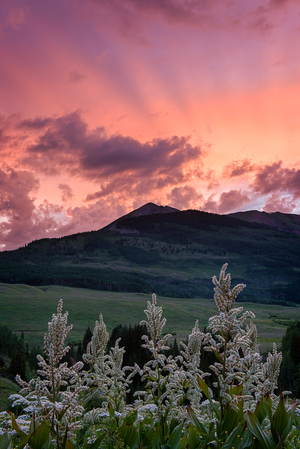 MAB-20150714-CO-CRESTED-BUTTE-GOTHIC-ROAD-SUNRISE-8109477.jpg